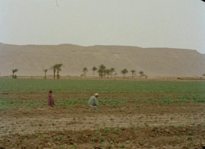 Too Soon Too Late (1981)